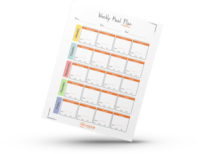 Free Gym Meal Plan Template